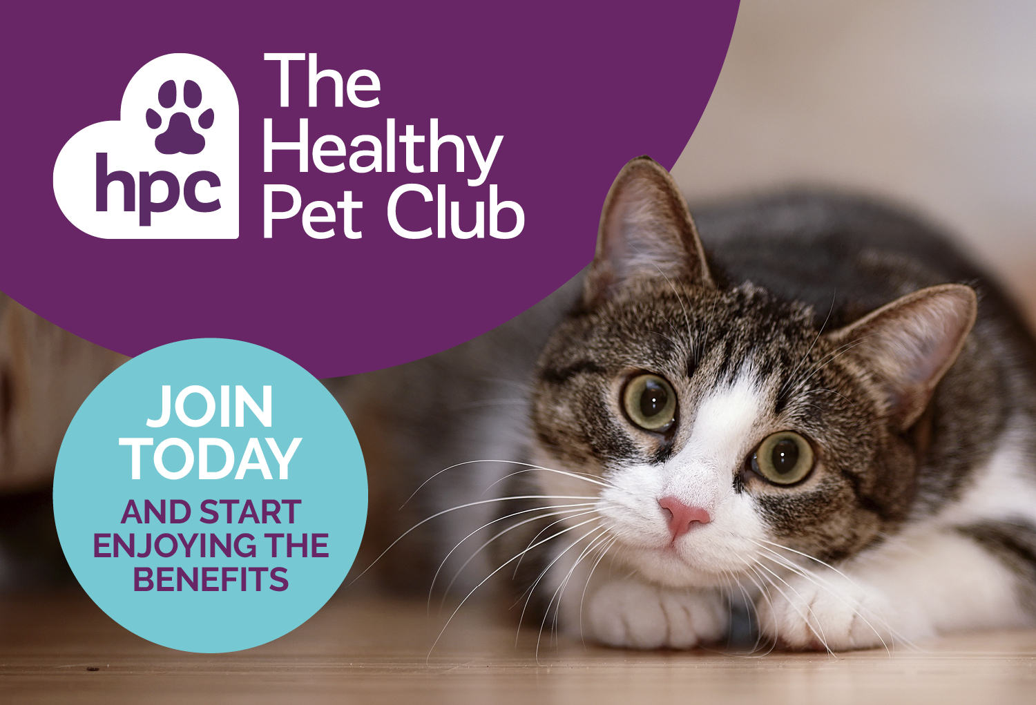 The Healthy Pet Club, Sign Up Today